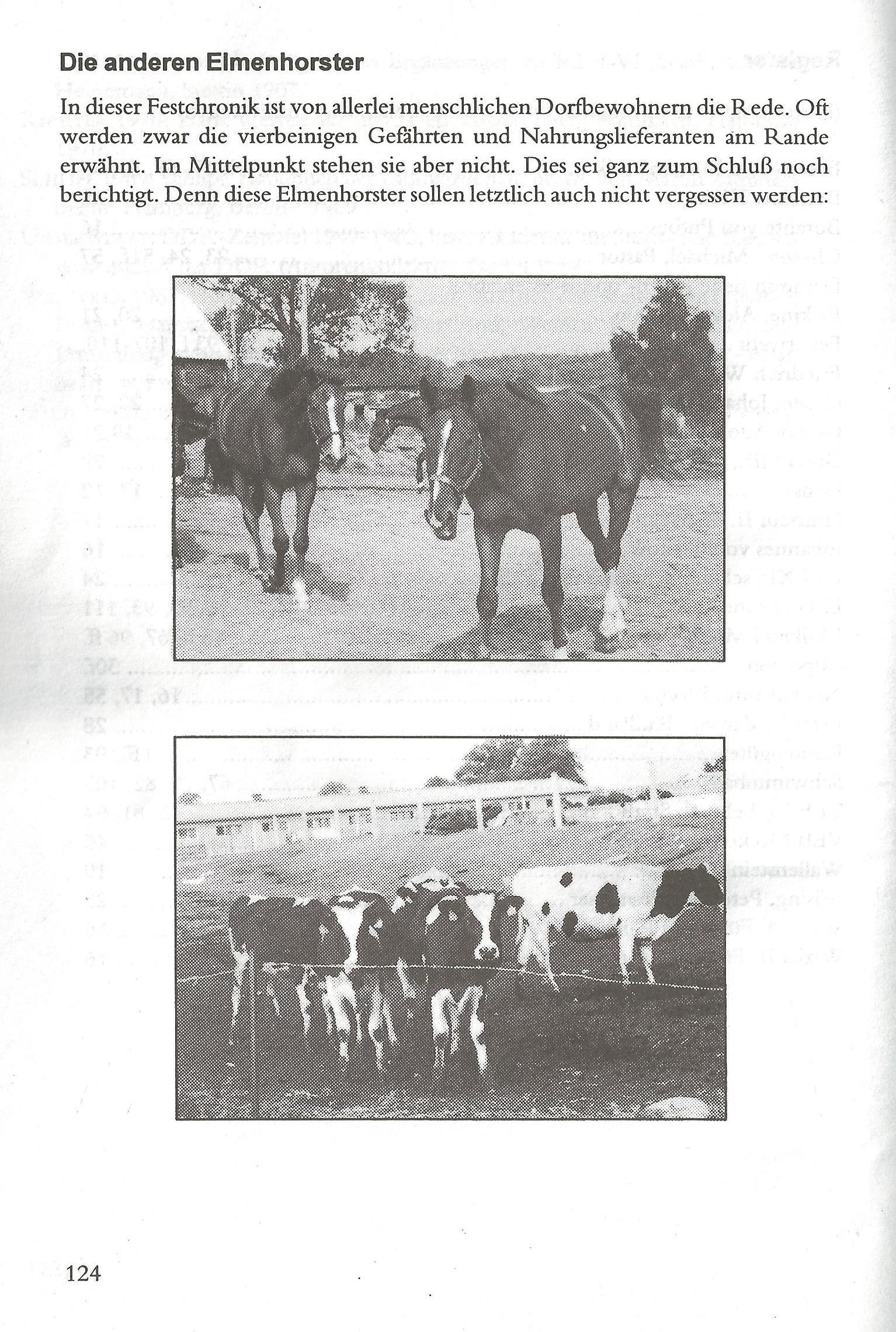 Die anderen Elmenhorster (Seite 124)