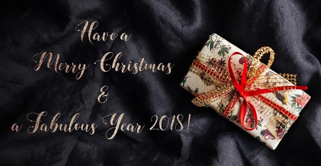 Ein besinnliches Weihnachtsfest und eine glückliches Jahr 2018!