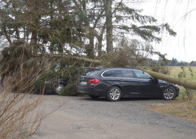 NEWS - 2018_03 OZ berichtete - Baum stürzt auf parkende Autos (Webseite Galerie1)