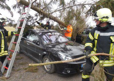 NEWS - 2018_03 OZ berichtete - Baum stürzt auf parkende Autos (Webseite Galerie2)