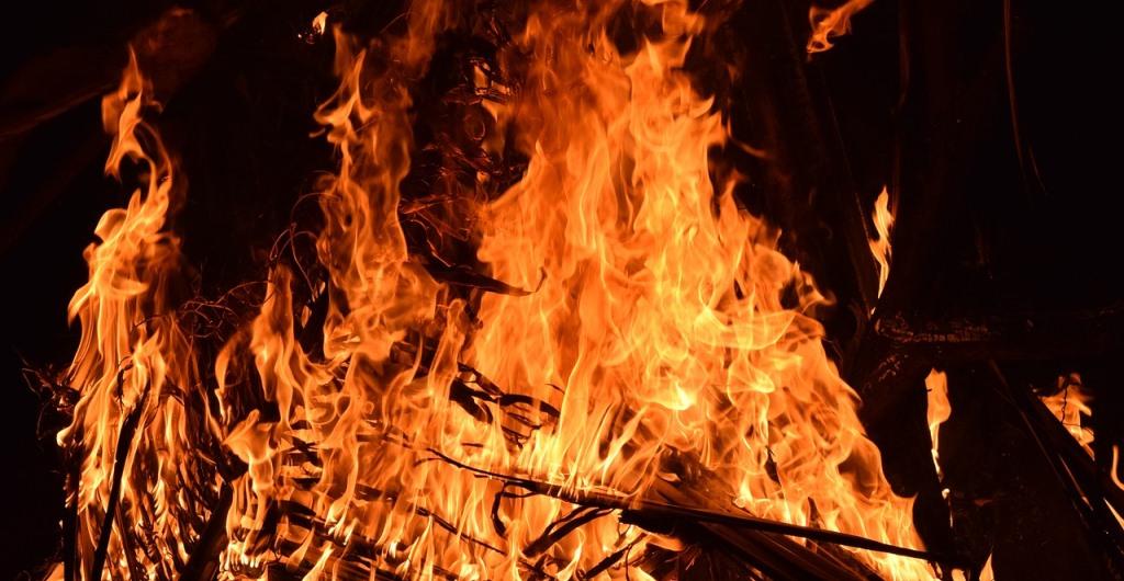 OZ berichtete – Bäume gehen lichterloh in Flammen auf
