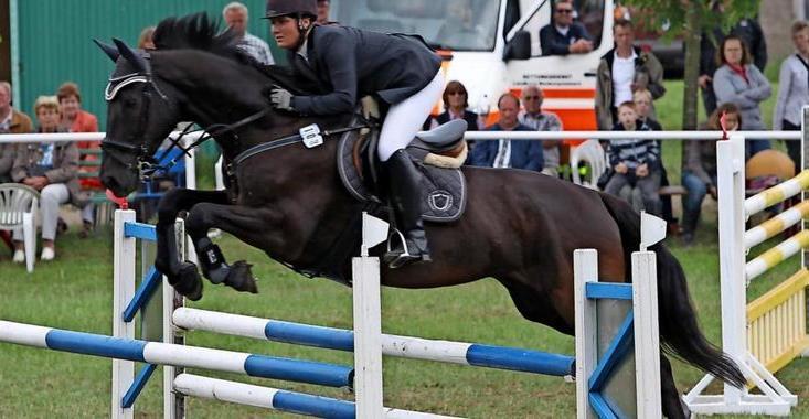 OZ berichtete – Nur die mutigsten Pferde und Reiter starten in Elmenhorst beim Flutlichtspringen