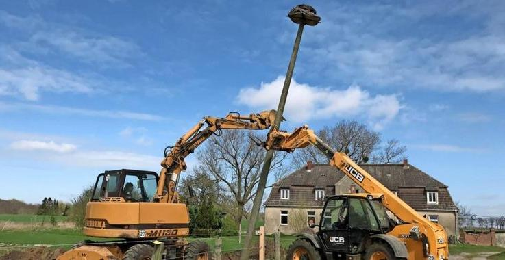 OZ Beitrag – Elmenhorst: Storchennest-Umzug mit Hindernissen